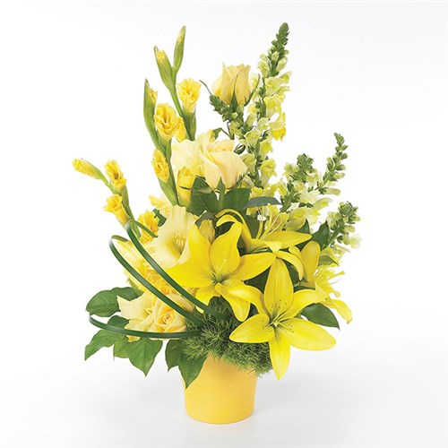"""Let the Sunshine In"" flower bouquet (BF22-11K)"